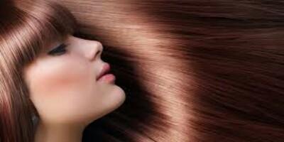 الزيتون لانبات الشعر