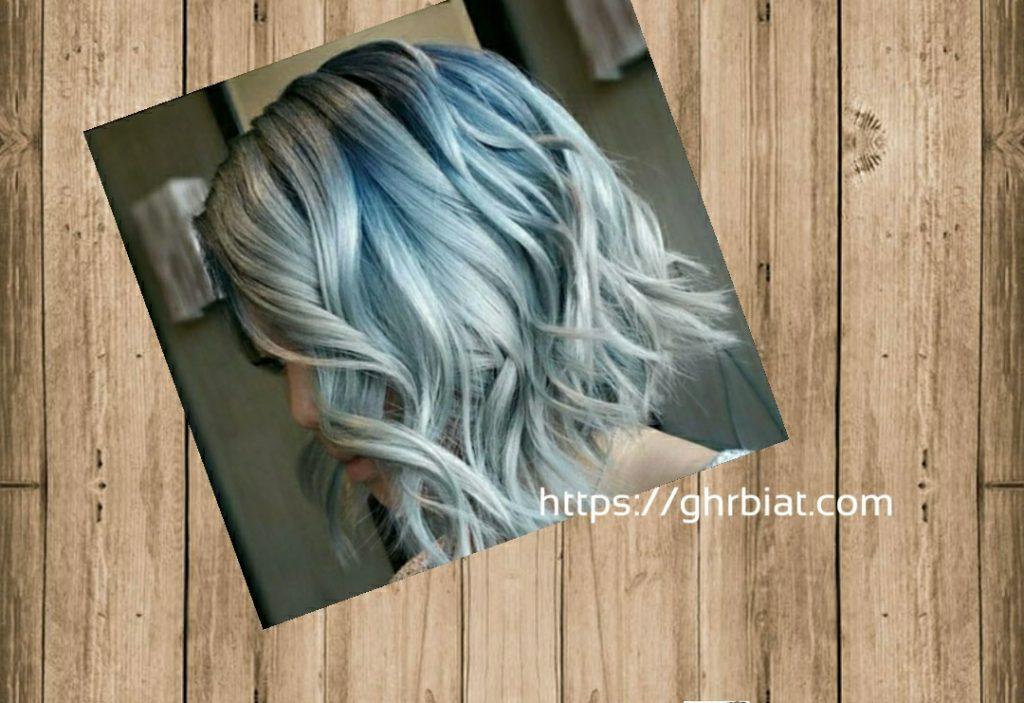 الشعر ألوان الأشقر الثلجي.