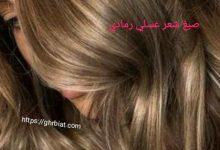 شعر عسلي رمادي
