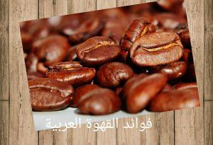 فوائد القهوة العربية للمعدة والجسم
